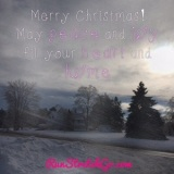 Wordless Wednesday: Merry Christmas fromMaine!