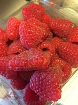 Wordless Wednesday: SummerBerries